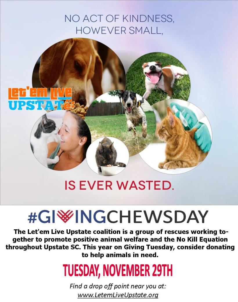 giving-chewsday-2016-flyer